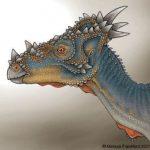 Foto del perfil de Mv-rex ;